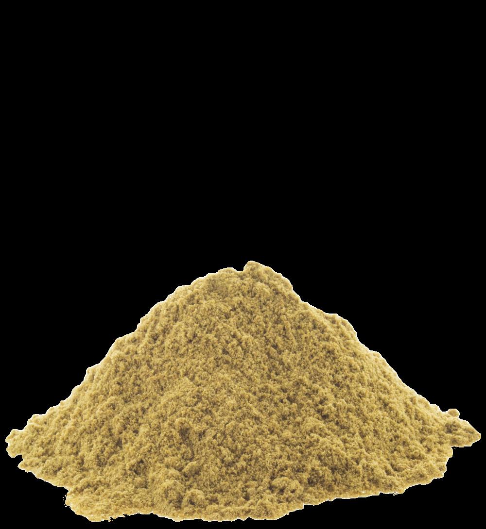Freshly Ground Premium Dhania Powder 100Gm By Sukarya