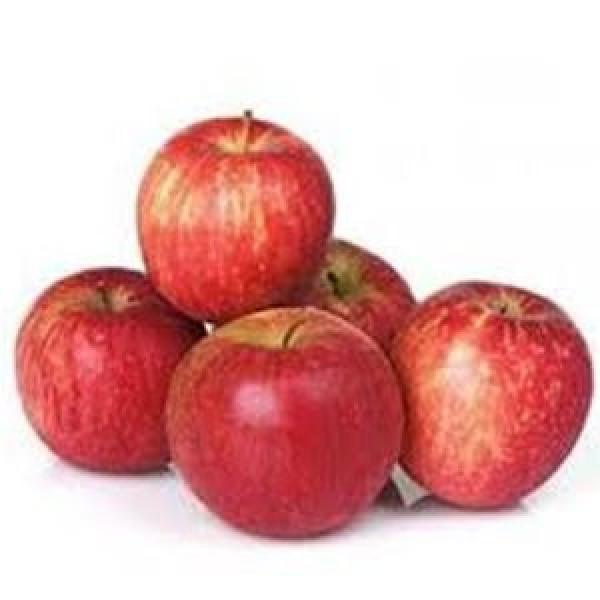 Apple Kinnaur 6pcs