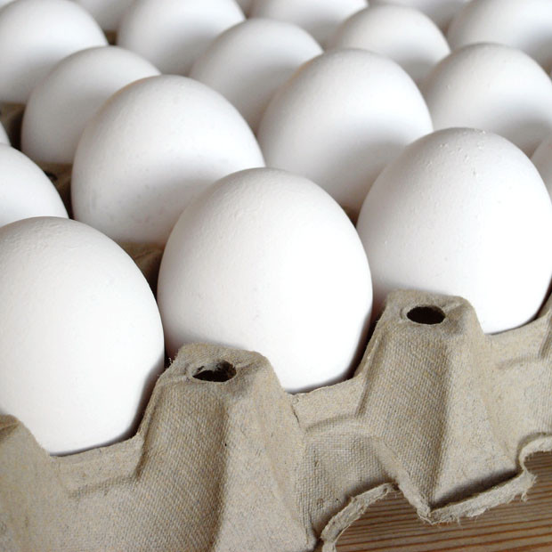 Table Eggs Tray Of 30