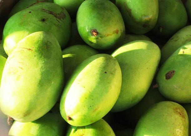 Mango - Langra 1 kg