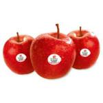 Apple Queen (New Zealand) 4Pc