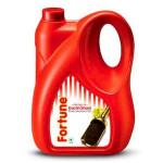 Fortune Kachi Ghani Oil 5L Jar
