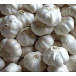 Garlic (lehsun) 250g