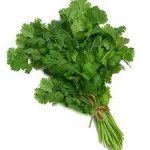 Coriander leaves (Dhania) 100g