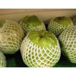 Guava -Thai 1Pc (450-550G)