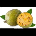 Bel Fruit 1pc